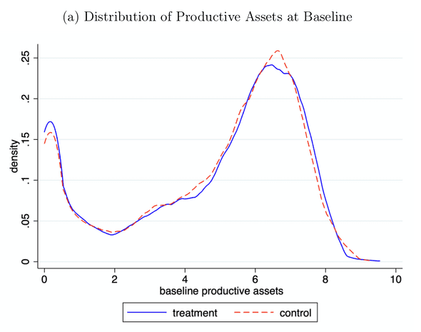 Distribution of productive assets at baseline. Balboni et al. 2020