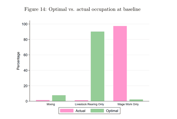 Optimal vs. actual occupation in households. Balboni et al. 2020